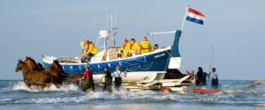 [:nl]Demonstratie paardenreddingsboot[:de]Vorführung des Pferderettungsbootes[:]